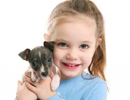 Картинки детские собака. Картинки собака и ребенок ...